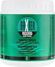 Духи, Парфюмерия, косметика Маска с экстрактами лечебных трав - Punti di Vista Baxter Maschera Hair Mask