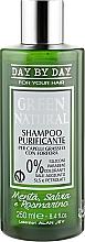 Духи, Парфюмерия, косметика Шампунь очищающий для жирных волос и волос с жирной перхотью - Alan Jey Green Natural Shampoo