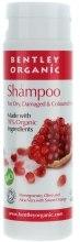 Духи, Парфюмерия, косметика Шампунь для сухих и поврежденных волос - Bentley Organic Shampoo For Dry & Damaged Hair