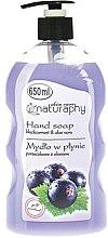 Духи, Парфюмерия, косметика Жидкое мыло для рук смородина и алоэ вера - Bluxcosmetics Naturaphy Hand Soap