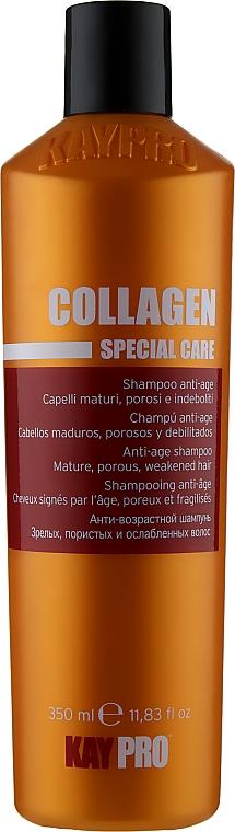 Шампунь с коллагеном для пористых и ослабленных волос - KayPro Special Care Shampoo