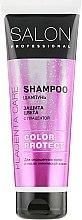 Духи, Парфюмерия, косметика Шампунь для окрашенных волос - Salon Professional Color Protect