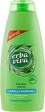 Духи, Парфюмерия, косметика Шампунь для нормальных волос с экстрактом бамбука и алоэ - Erba Viva Hair Shampoo