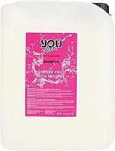 Духи, Парфюмерия, косметика Шампунь для волос жирных корней и сухих на кончиках - You Look Professional Greasy Roots Dry Lenths Shampoo