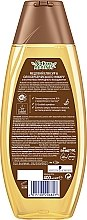 """Шампунь для ослабленных и ломких волос """"Медовый эликсир и масло берберийского инжира"""" - Schauma Nature Moments Shampoo — фото N3"""