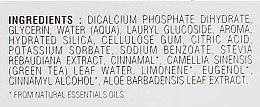 Зубная паста со вкусом свежей мяты окутанной тонким ароматом корицы - Lebon Toothpaste Villa Noacarlina Cinnamon and Mint Organic — фото N4