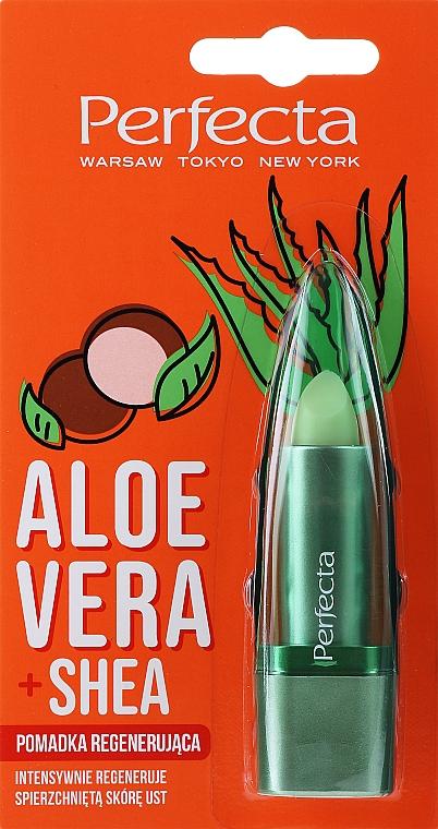 """Восстанавливающая и гигиеническая помада для губ """"Алоэ вера и масло ши"""" - Perfecta Aloe Vera + Shea Lip Balm"""