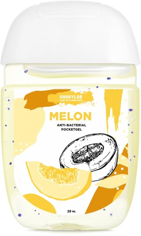 "Антибактериальный гель для рук ""Melon"" - SHAKYLAB Anti-Bacterial Pocket Gel"