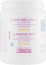 Парфумерія, косметика Косметична грязь для схуднення - Argital Fango Snellente