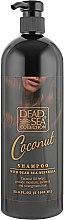 Духи, Парфюмерия, косметика Шампунь с минералами Мертвого моря и кокосовым маслом - Dead Sea Collection