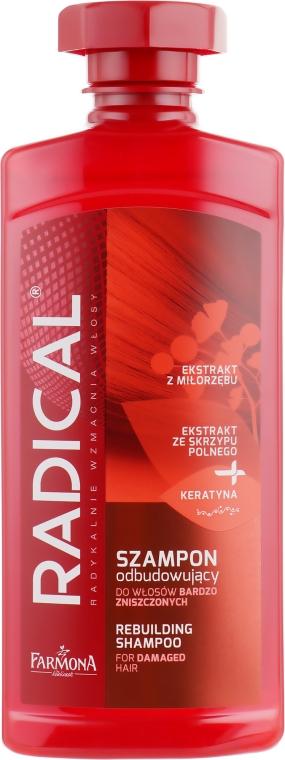 Шампунь восстанавливающий для поврежденных волос - Farmona Radical Rebuilding Shampoo For Damaged Hair
