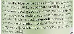 Дезодорант для тіла - Aubrey Organics Plus High Natural Roll-On Deodorant — фото N3