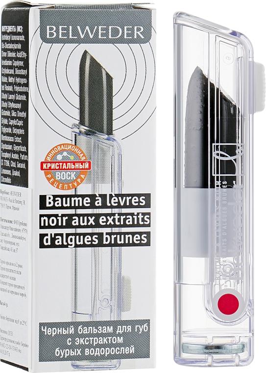 Черный бальзам для губ с экстрактом бурых водорослей - Belweder Lip Balm