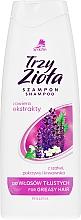 Духи, Парфюмерия, косметика Шампунь для жирных волос - Pollena Savona Shampoo