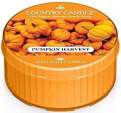 """Духи, Парфюмерия, косметика Чайная свеча """"Тыквенный урожай"""" - Country Candle Pumpkin Harvest Daylight"""