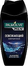 """Духи, Парфюмерия, косметика Гель для душа для мужчин """"Северный океан"""" - Palmolive Shower Gel Man"""