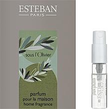Духи, Парфюмерия, косметика Парфюмированный аромат для дома - Esteban Sous L'Olivier Home Fragrance (пробник)