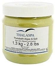 Духи, Парфюмерия, косметика Измельченная ламинария с морской солью - Thalaspa Thalabath Algae&Salt