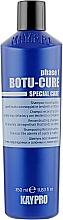 Духи, Парфюмерия, косметика Шампунь для реконструкции волос - KayPro Special Care Boto-Cure Shampoo
