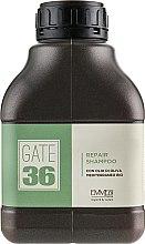 Духи, Парфюмерия, косметика Шампунь восстанавливающий - Emmebi Italia Gate 36 Oliva Bio Repair Shampoo