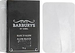 Духи, Парфюмерия, косметика Алюминиевый блок - Barburys Alum Block