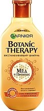 "Шампунь для волос ""Мед и прополис"" - Garnier Botanic Therapy — фото N1"