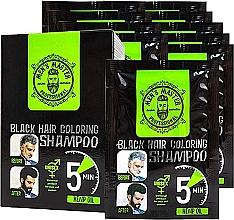 Духи, Парфюмерия, косметика Окрашивающий шампунь для волос для камуфлирования седины - Men's Master Black Hair Coloring Shampoo