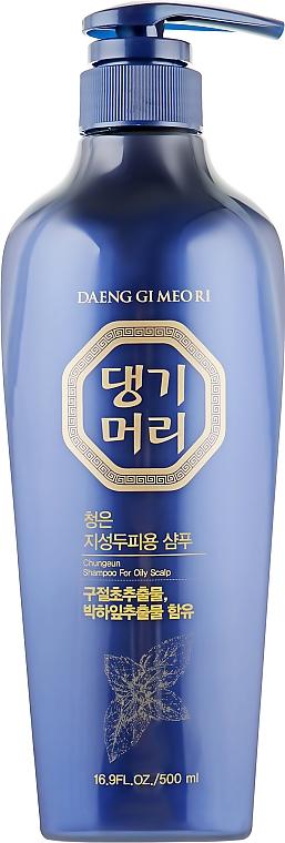Тонизирующий шампунь для жирных волос - Daeng Gi Meo Ri ChungEun Shampoo For Oily Scalp