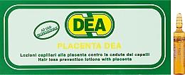 Духи, Парфюмерия, косметика Лосьон-лечение для слабых и ломких волос с плацентой и пантенолом - Black Professional Line Dea Placent Hair Ampoules