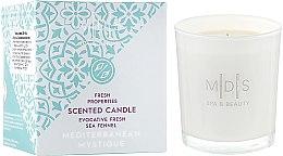 """Парфумерія, косметика Ароматична свічка """"Таємниці Середземномор'я"""" - Mades Cosmetics Mediterranean Mystique Scented Candle"""