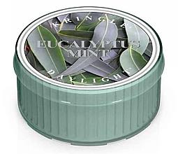 Духи, Парфюмерия, косметика Чайная свеча - Kringle Candle Daylight Eucalyptus Mint