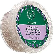 Духи, Парфюмерия, косметика Твердый шампунь для тонких волос - Fresh Line Botanical Hair Remedies Volume Euterpe