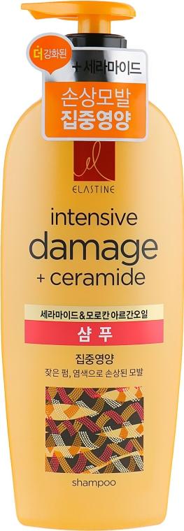 Питательный шампунь с аргановым маслом - LG Household & Health Elastine Intensive Ceramide Argan Nutritive Shampoo
