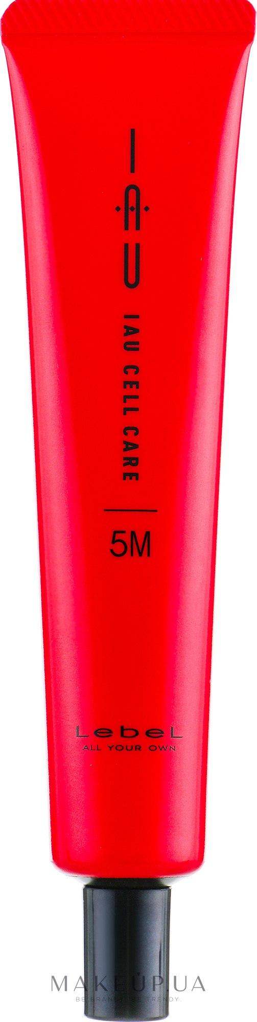 Крем-концентрат для увлажнения волос - Lebel Infinity Aurum Salon Care IAU Cell Care 5M — фото 40ml