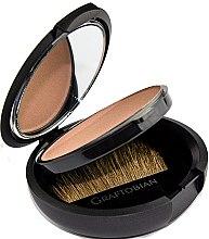 Духи, Парфюмерия, косметика Матовый бронзатор с зеркалом и кистью - Graftobian HD Matte Body Bronzer Compact
