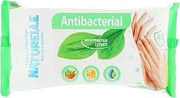 """Салфетки влажные """"Подорожник"""", 48шт - Naturelle Antibacterial — фото N1"""