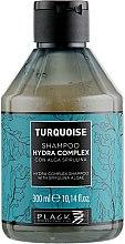 Духи, Парфюмерия, косметика Шампунь безсульфатный для восстановления волос - Black Professional Line Turquoise Hydra Complex Shampoo