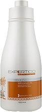 Духи, Парфюмерия, косметика Кондиционер для волос на основе арганового масла - Tico Professional Expertico Argan Oil Conditioner