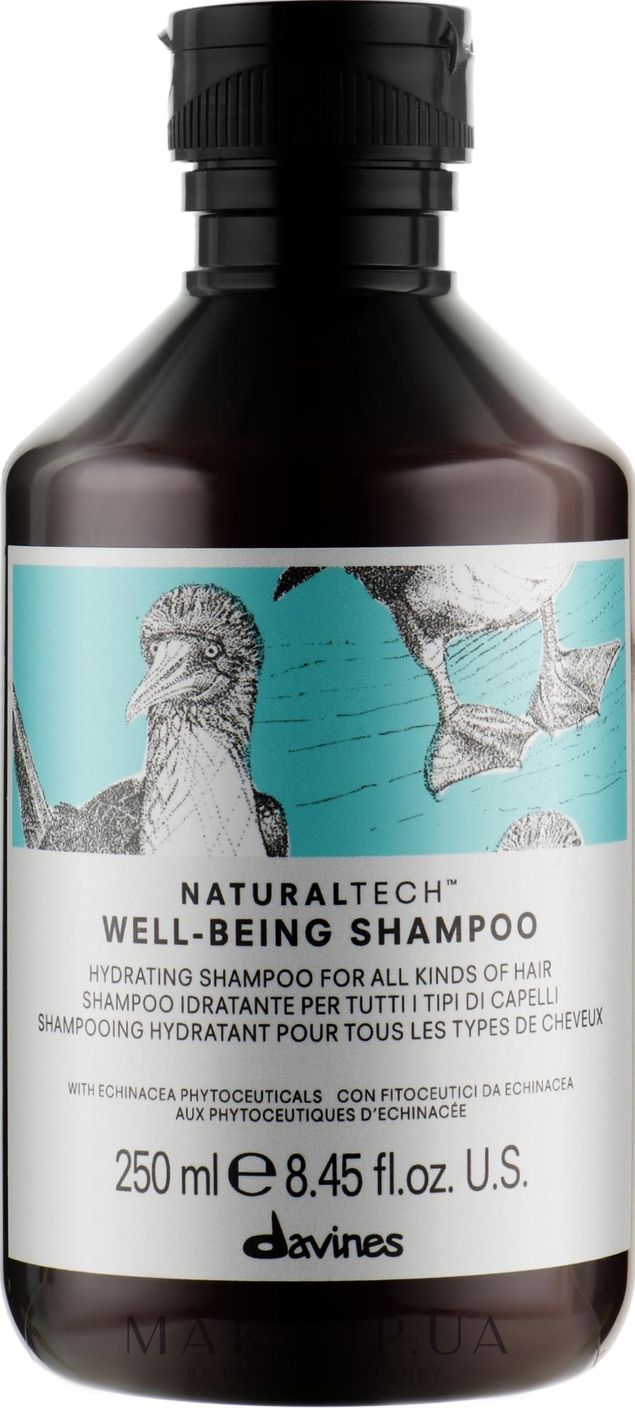 Зволожуючий шампунь для всіх типів волосся - Davines Well Being Shampoo — фото 250ml