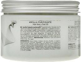 Маска для смягчения волос / стимуляции фолликул - Eva Professional Capilo Technikum Purifier #41 — фото N2