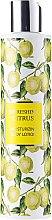 Духи, Парфюмерия, косметика Лосьон для тела - Vivian Gray Refreshing Citrus Body Lotion