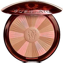 Духи, Парфюмерия, косметика Пудра для лица с эффектом сияния - Guerlain Terracotta Light The Sun-Kissed Healthy Glow Powder