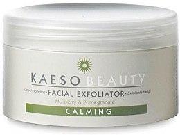 Духи, Парфюмерия, косметика Питательный эксфолиант для чувствительной кожи лица - Kaeso Calming Exfoliator