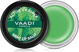 Духи, Парфюмерия, косметика Бальзам для губ с мятой - Vaadi Herbals Mint lip Balm