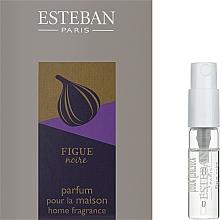 Духи, Парфюмерия, косметика Парфюмированный аромат для дома - Esteban Figue Noire Home Fragrance (пробник)