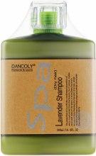 Духи, Парфюмерия, косметика Арома-шампунь с экстрактом лаванды для сухих волос - Dancoly Lavender Shampoo Dry Hair
