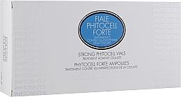 Духи, Парфюмерия, косметика Антицеллюлитная сыворотка усиленного действия для тела - Phyto Sintesi Phytocell Forte Ampoules