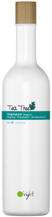 Органический дезинфицирующий шампунь против перхоти с маслом чайного дерева - O'right Tea Tree Shampoo
