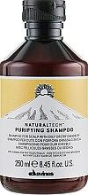 Духи, Парфюмерия, косметика Очищающий шампунь против перхоти - Davines Purifying Shampoo