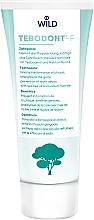 Парфумерія, косметика Зубна паста з маслом чайного дерева - Dr. Wild Tebodont